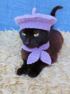 French Beret Hat and Scarf Beret Hat for Cat Cat Scarf Purple Kitten Outfit Cat Accessories Black Cat Costume Pet Costume Claw costume Black Cat Costumes, Pet Costumes, Halloween Costumes, Costume Chat, Grand Chat, Baby Animals, Cute Animals, Gatos Cool, Cat Scarf