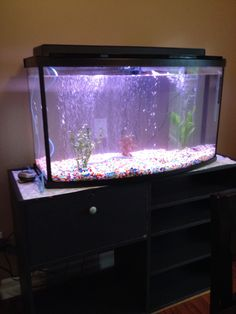 Almost ready for fish! :)