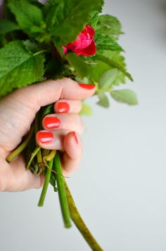 How to make short-stemmed flower arrangements @A Nest for All Seasons