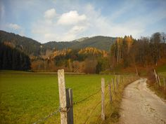Aich - Austria Austria, Beautiful Places, Mountain, Country Roads, Photos, Pictures, Mountaineering