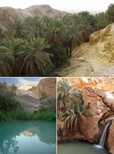 Tunisia~ Chebika belongs to the collection of unlikely desert oases of the mountains north of the great Tunisian chotts. Least famous, Chebika offers perhaps the most effective and dramatic experience among them. Where the mountains rise, Chebika lies. Most of the year it is so exposed to the sun that it once was known as Qasr el-Shams, Castle of the Sun.