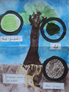 Lípa srdčitá - malba vodovkami, detaily - skutečný list, frotáž listu a frotáž kůry stromu (skupinová práce - formát A3) Praha, Projects, Movie Posters, Crafts, Art, Craft Art, Blue Prints, Film Poster, Creative Crafts