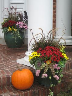 Fall Decorating Idea: Beautiful Fall Planter with Garden Mums and Flowering Kale