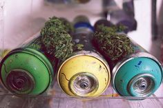 #w33daddict #Buds #Nugs #weed #Marijuana #Ganja