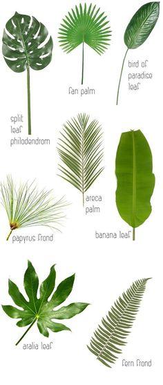 Groen blad als decoratie is het he-le-maal dit jaar