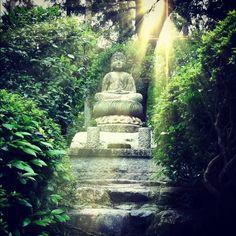 Buddha in Ryoan-ji, Tokyo.