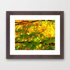 Colors #1 Framed Art Print 12 X 10, $39 with frame.