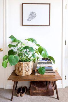 Decoração entrada da casa | plants in baskets