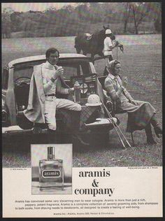 1976-ARAMIS-Cologne-Aramis-Company-Horse-Polo-Man-Woman-VINTAGE-AD