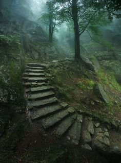 Stairs up to Chojnik castle, near Sobieszów in Poland. Photograph by Karol Nienartowicz.