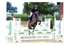 Aktuelles von Elin Springturnier Münster Albachten  Lacalito Springpferde 4 J. Klasse A 8,3 2. Platz Nameless Springpferde 5/6 J. Klasse A 8,3 1. Platz  Herzlichen Glückwunsch