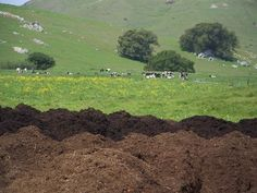 Aug 25 - Senate Sends Governor Bill to Include Compost Facilities in Local Planning — Californians Against Waste Environmental Law, Compost, California, Composters