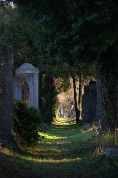 Zentralfriedhof, alte jüdische Gräber. Vienna Central Cemetery.