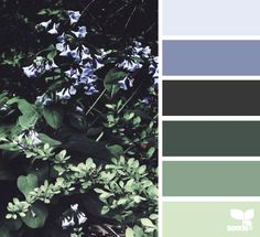 color palette - nature made hues