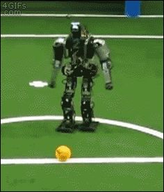 Life is this robot: