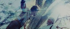 Film: Django Unchained Dir: Quentin Tarantino Director of Photography: Robert Richardson Year: 2012