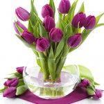 Amazing Vinegar Uses In Garden Bulb Flowers, Flower Vases, Flower Pots, Table Flowers, Amazing Flowers, Love Flowers, Wedding Flowers, Bulbs And Seeds, Vinegar Uses