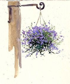 Hanging basket of purple flowers watercolor floral art by Cathy (Kate) Johnson. Watercolor Pictures, Watercolor Cards, Watercolour Painting, Watercolor Flowers, Painting & Drawing, Watercolors, Drawing Flowers, Watercolor Sketch, Easy Flower Drawings