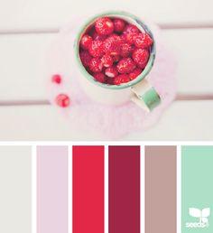 """site proposant des """"palettes"""" de couleurs assorties."""