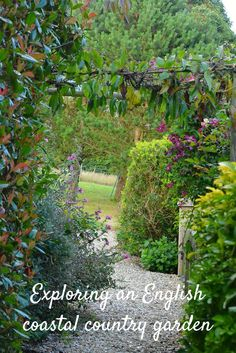 Exploring a garden which perfectly combines a coastal location with traditional English country garden planting.