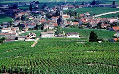Burgundy, France: readers' tips, recommendations and travel advice