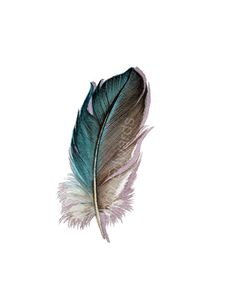 Aquamarine Feather - Original Watercolor Feather Study 513