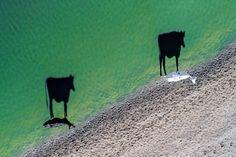 Luftbildaufnahmen: Die besten Drohnenfotos des Jahres [Seite 11] - Reisen aktuell - derStandard.at › Lifestyle