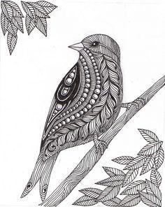 Mother bird | Flickr - Photo Sharing!