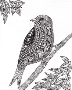 Mother bird drawing