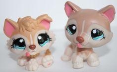 2 Littlest Pet Shop LPS #1012 #1013 Tan Cream Set of 2 Huskies Puppy Baby Husky #Hasbro