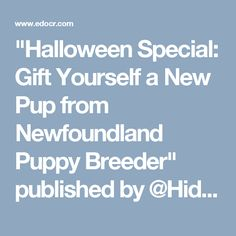 """""""Halloween Special: Gift Yourself a New Pup from Newfoundland Puppy Breeder"""" published by @Hidden_Akers on @edocr"""
