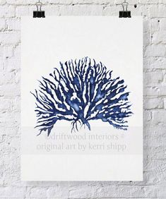 Sea Coral IV in Denim Print 8x10  Sea Life by driftwoodinteriors, $25.00