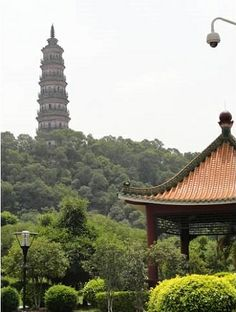 Why is Blogger Rita dreaming of China at Thanksgiving time? Find out this and more in her 7 quick stories from the week #MommyBlog