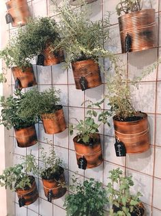 The Effective Pictures We Offer You About Balcony Garden wall A quality picture can tell you many things. You can find the most beautiful pictures that can be presented to you about Balcony Garden apa Vertical Garden Design, Vertical Gardens, Small Balcony Decor, Small Balcony Garden, Balcony Plants, Garden Plants, House Plants, Garden Stand, Walled Garden