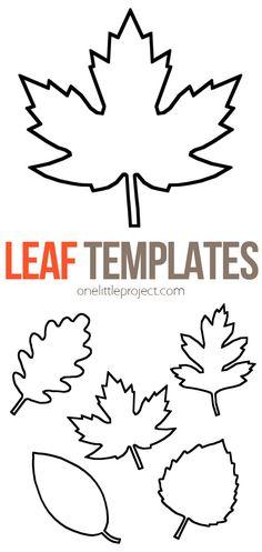Leaves Template Free Printable, Maple Leaf Template, Leaf Printables, Printable Crafts, Free Printables, Owl Templates, Shape Templates, Applique Templates, Stencil Templates