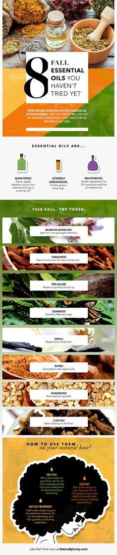 fall essential oils for curly hair infographic