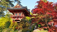 The Temple Gate in the Japanese Tea Garden was developed for the 1894 California Midwinter International Exposition.