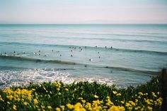 Shakas and Single Fins - Santa Cruz, California. Camera Aesthetic, Film Aesthetic, La Haine Film, A Serbian Film, Photography Camera, Photography Tips, Portrait Photography, Wedding Photography, Movie Posters