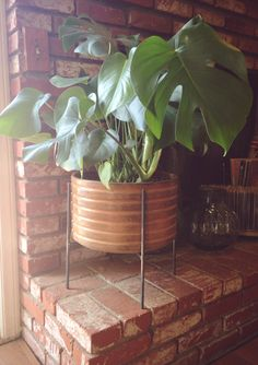 4legged steel pot stand via thedoeorthedeer