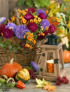 Harvest Decorations, Table Decorations, Centerpieces, Big Photo, Happy Fall Y'all, Flower Aesthetic, Leaf Art, Flower Pictures, My Flower