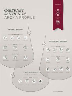 Cabernet Sauvignon grape variety wine aroma profile flavors fruit spices Social Vignerons