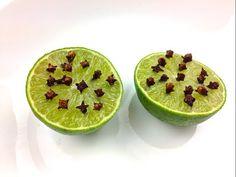 Myggfälla av en lime – billigt, enkelt och effektivt - Mitt kök