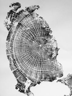 art design landspacing to plant Oregon Trees, Texas Wall Art, Cannon Beach Oregon, Tree Rings, Beach Print, Oregon Coast, Home Art, Printmaking, Paisajes
