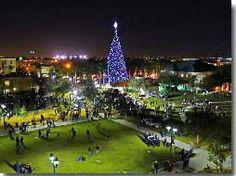 Delray Holiday Tree @Delray DDA #PalmBeaches #Florida #Holiday