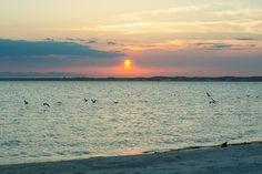Dewey Beach - Google Search