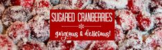 I can't believe I'd never tasted sugared cranberries until yesterday. Why didn't I know about these sweet, tart, sparkly, little nuggets of goodness?