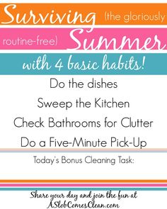 Surviving Summer with Four Basic Habits at ASlobComesClean.com (FREE Printable!!)