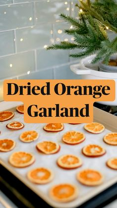 Christmas Tree Decorations, Christmas Crafts, Christmas Stuff, Christmas Ideas, Diy Ugly Christmas Sweater, Ugly Sweater, Stove Top Potpourri, Dried Oranges, Essential Oil Candles