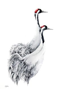 Cranes -Original watercolors painting, Watercolour painting by Karolina Kijak | Artfinder