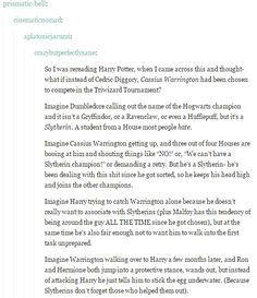 OOO I like this! But I feel like the reason it was Diggory was that Hufflepuffs really weren't that important in the books and she needed to have a strong Hufflepuff character who would sacrifice himself w/ Harry. Cause there's no way Warrington would share the cup w/ him